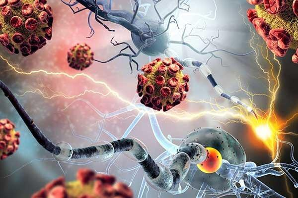 فرضیه جدید؛ آیا سرطان واگیردار است؟