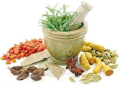 سال جاری 2800 تن انواع گیاهان دارویی در آذربایجان غربی برداشت شد