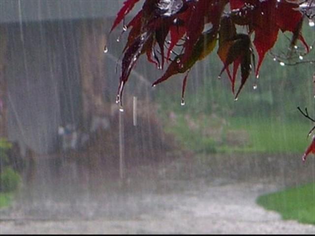 بارش های موثر و بیشتر از فردا شب در گلستان
