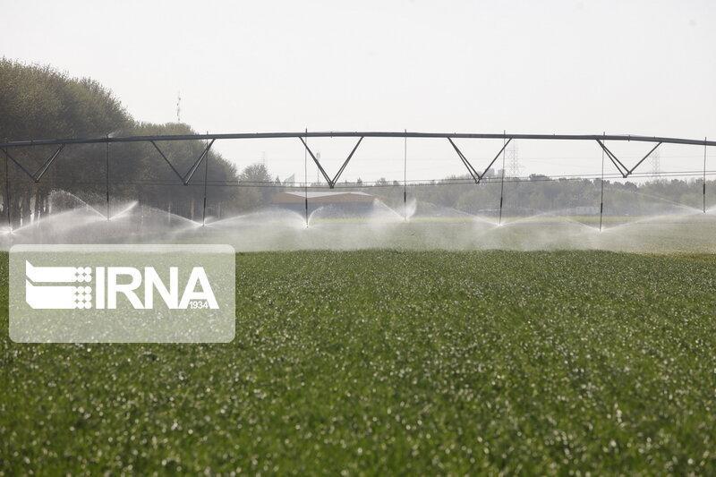 خبرنگاران نگرشی بر مصرف آب سبز در کشاورزی چهارمحال و بختیاری