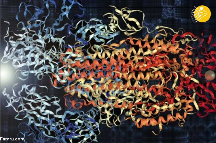 (بشنوید) دانشمندان ساختار کرونا را به موسیقی تبدیل کردند!