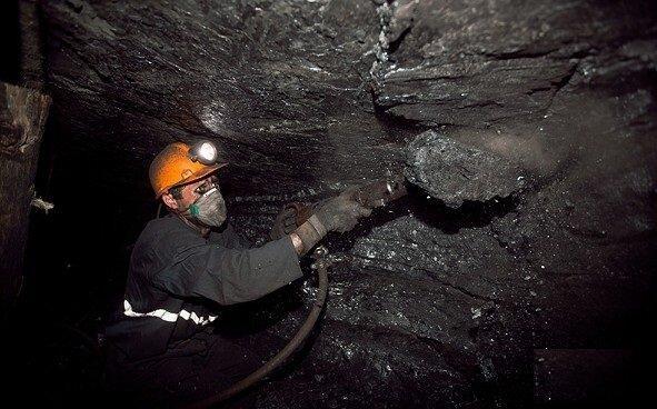 تکذیب واگذاری شرکت معادن زغال سنگ کرمان به بخش خصوصی