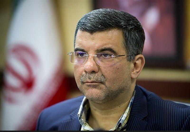 خبرنگاران معاون وزیر بهداشت: تمهیداتی برای آیین شب های قدر با کمترین آسیب اعلام می شود