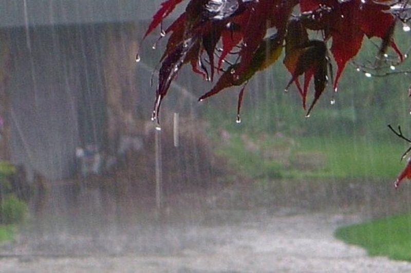 خبرنگاران بارش باران در دهدز
