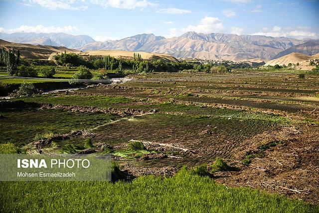خسارات بیش از 47 میلیارد تومانی کرونا به بخش کشاورزی کهگیلویه و بویراحمد