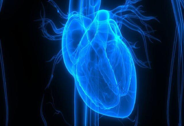 آنالیز رویکردی جدید برای ترمیم ساختار و عملکرد قلب آسیب دیده