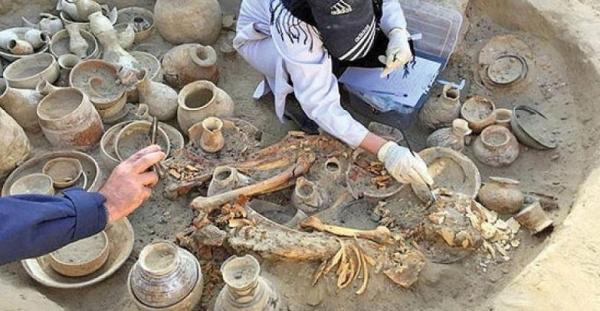 دورکاری خارجی ها در کاوش ها، کرونا 60 درصد از فعالیت های باستان شناسی را تعطیل کرد