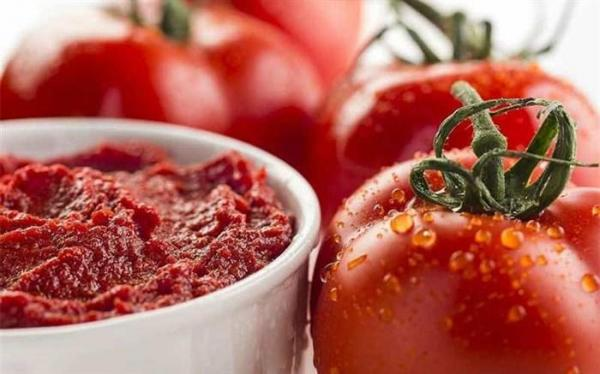 صادرات رب گوجه فرنگی تا خاتمه دی ماه تمدید شد