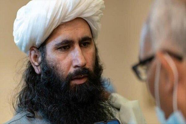 طالبان: در حال بررسی طرح پیشنهادی آمریکا هستیم