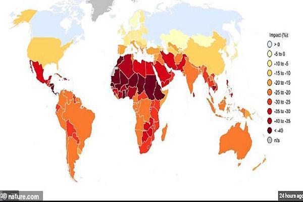 بحران سراسری غذا در سراسر دنیا